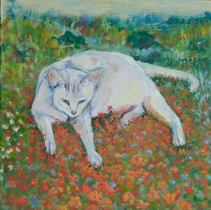 Picture of Monet's Cat